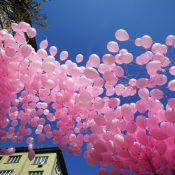 Breast Cancer; Is Critical Illness a Financial Solution